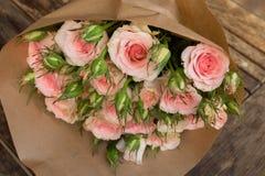 Violette bloeiende rozen Royalty-vrije Stock Foto