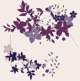 Violette bloemenillustratie Stock Fotografie