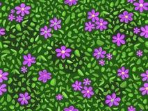 Violette Blume und grünes Blatmuster Lizenzfreie Stockfotos