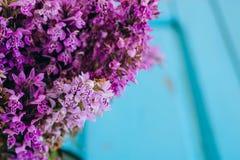 Violette Blumen von Dactylorhiza maculata Stockbild