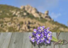 Violette de bouquet sur de vieux conseils en bois Photos stock