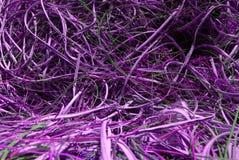 Violette draden royalty-vrije stock foto's