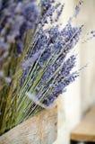 Violette droge lavendelbloemen royalty-vrije stock afbeelding