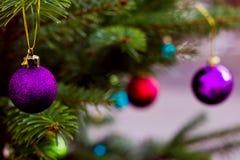 Violette Glaskugel auf Weihnachtsbaum stockbilder