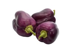 Violette groene paprika Royalty-vrije Stock Afbeeldingen