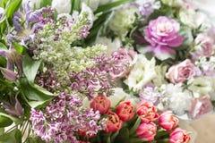 Violette lila Blumen des Frühlinges, abstrakter weicher Blumenhintergrund Lizenzfreie Stockfotos