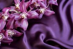 Violette Seide und Orchideen Stockbild