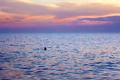 Violette Tönungswolken über Meer nach Sonnenuntergang Stockbild