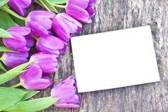 Violette Tulpen auf der Eiche brünieren Tabelle mit weißem Blatt Papier Stockbilder