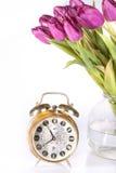 Violette Tulpen und die alte goldene Borduhr Stockbilder