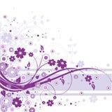 Violetter Blumenhintergrund Stockfotos