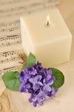 Violetter Blumenstrauß Lizenzfreies Stockbild