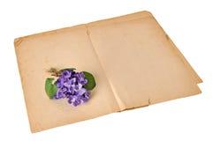 Violetter Blumenstrauß Lizenzfreie Stockfotografie