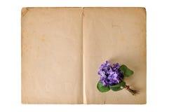 Violetter Blumenstrauß Stockfotografie