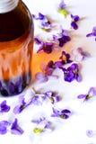 Violetter Sirup Stockbilder