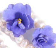 Violettes Images libres de droits