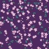 Violettes Blumenmuster Stockbild