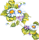 Violettes de marguerites illustration libre de droits
