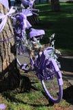 Violettes Fahrrad Stockfoto