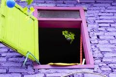 Violettes Fenster und Wände lizenzfreies stockbild