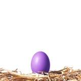Violettes Osterei auf einem Strohnest Stockfotos