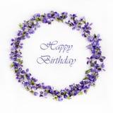 Violettes sensibles de ressort sur une fin blanche de fond  Carte de joyeux anniversaire Images stock