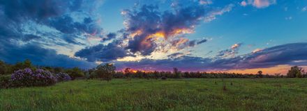 Violettes Sonnenuntergangpanorama Frühlingssonnenuntergangmalereien Ukrainische Naturansicht stockbild