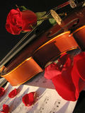 Violin. Shot of violin with rose on a music sheet. Shot with a Canon Powershot A520 camera Stock Images