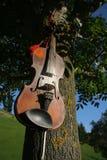 Violin. Old gipsy violin hangd on a tree Royalty Free Stock Image