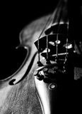 Violin. Work in black and white detail Stock Image