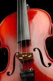 Violin. On a dark background Royalty Free Stock Photo