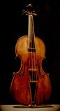 Violin. Classical violin against black background Stock Images