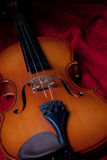Violin Stock Image