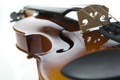 Violin. On white background. Studio shot Stock Images
