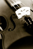Violin. A close-up shot of a violin royalty free stock images