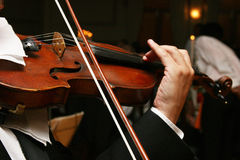 Violin Stock Photography
