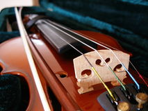 Violin. Play music Stock Photos