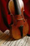 The violin Royalty Free Stock Photos