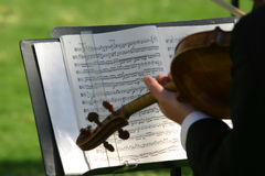 Violin. And sheet music Stock Photography