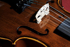 Violin. Violin, fiddle, musical,brown,art Royalty Free Stock Photography