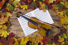 Violin against the backdrop of autumn foliage Royalty Free Stock Image
