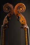Violin And Reflection Royalty Free Stock Photo