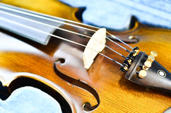 Violin. stock photos