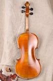Violin back view  Royalty Free Stock Image