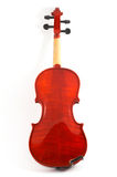 Violin back view on white back Stock Photos