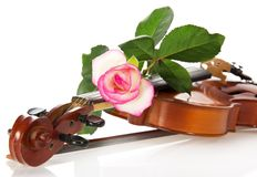 Violin, beautiful rose close up Royalty Free Stock Images