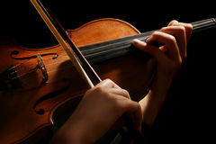 Violin on black Stock Photography