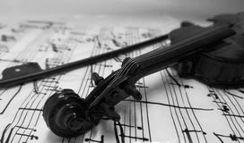 Violin black and white. Stringed musical instrument Stock Image