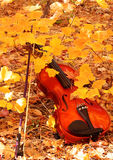 Violin and Bow in Autumn. A Violin and Bow posed in an autumn leaf setting Stock Photography