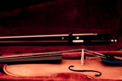 Violin and bow in dark red case. Close up view of a violin strings and bridge royalty free stock photography